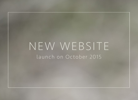 tammy-nicole-photography-newlaunch